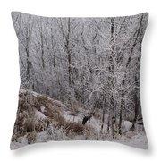 Canadian Ice Fog  Throw Pillow
