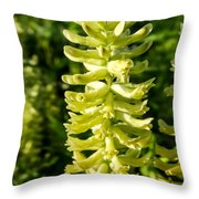 Canadian Milkvetch Wildflower Throw Pillow