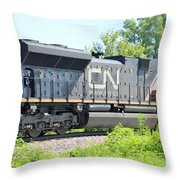 Canadian Northern Throw Pillow