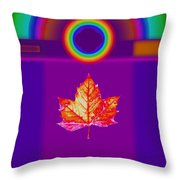 Canadian Palladian Throw Pillow