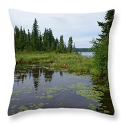 Canadian Shield Throw Pillow