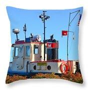 Canal Park Dry Dock Throw Pillow