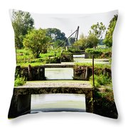 Canals And Bridges Throw Pillow