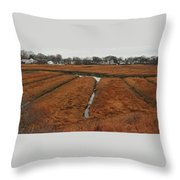 Canals To The River Throw Pillow