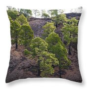 Canary Pines Nr 2 Throw Pillow
