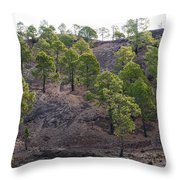 Canary Pines Nr 3 Throw Pillow