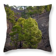 Canary Pines Nr 4 Throw Pillow