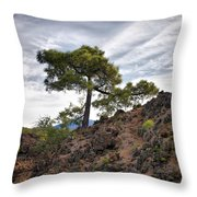 Canary Pines Nr1 Throw Pillow