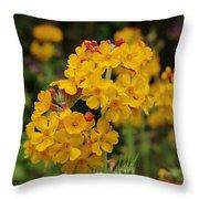 Candelabra Primula Throw Pillow