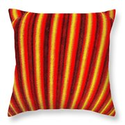 Candid Color 9 Throw Pillow