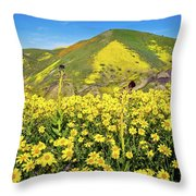 Candle Light In The Temblors - Superbloom 2017  Throw Pillow
