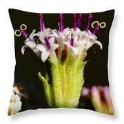 Candles On A Flower Cake Throw Pillow