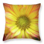 Candy-like Throw Pillow