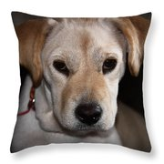 Canica 6 Throw Pillow