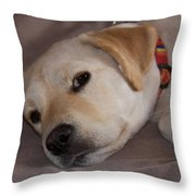 Canica 8 Throw Pillow