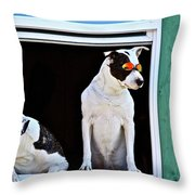 Canine Comedians Throw Pillow
