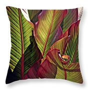 Canna Leaves 2   Throw Pillow