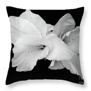 Canna Lily In Black And White Throw Pillow