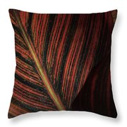 Canna Leaves Throw Pillow