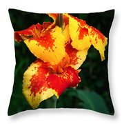 Cannas With Dew Throw Pillow