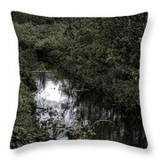 Cannon Beach Creek Throw Pillow