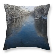 Cannon Reflections Throw Pillow