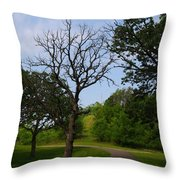 Cannon Valley Trail Throw Pillow