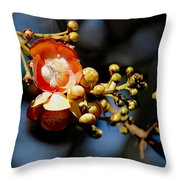 Cannonball Flower Throw Pillow