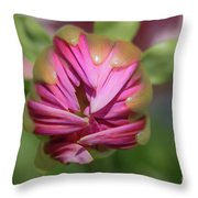 Cannot Rush Perfection Throw Pillow