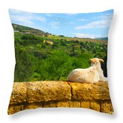 Cano Di Agrigento Throw Pillow
