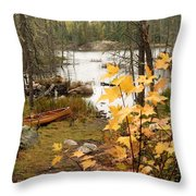 Canoe At Little Bass Lake Throw Pillow by Larry Ricker
