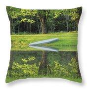 Canoe At Ponds Edge Throw Pillow