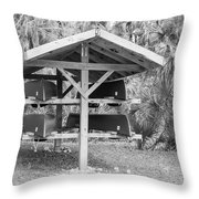 Canoes Ready To Rent Throw Pillow