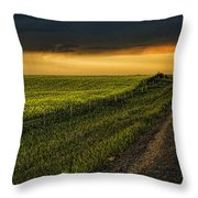 Canola And The Road Ahead Throw Pillow