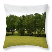 Canola Around The Trees  Throw Pillow