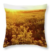 Canola Sunburst Throw Pillow
