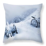 Canons Throw Pillow