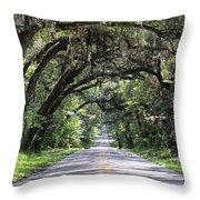 Canopied Street Throw Pillow