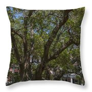 Can't See The House For The Tree's Throw Pillow