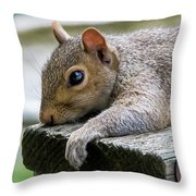 Can't Take Much More Of This Heat Throw Pillow