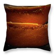 Cantaloupe Throw Pillow