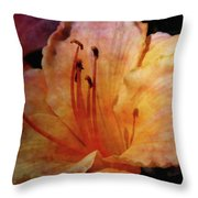 Cantaloupe Lily 3683 Idp_2 Throw Pillow