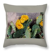 Cantankerous Cactus Throw Pillow