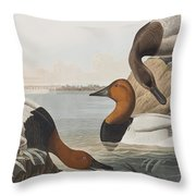 Canvas Backed Duck Throw Pillow