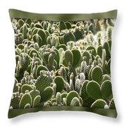Canvas Of Cacti Throw Pillow