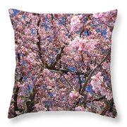 Canvas Of Pink Blossoms Throw Pillow