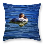 Canvasback And Blue Throw Pillow