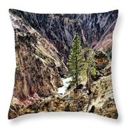 Canyon And Lower Falls Throw Pillow
