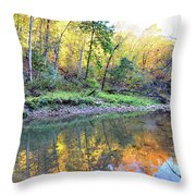 Canyon Autumn 2 Throw Pillow