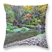 Canyon Autumn Throw Pillow